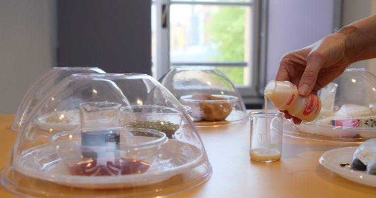 Una serata al Museo della Scienza con #ciboinfermento: 6 cose da sapere sul mondo delle fermentazioni