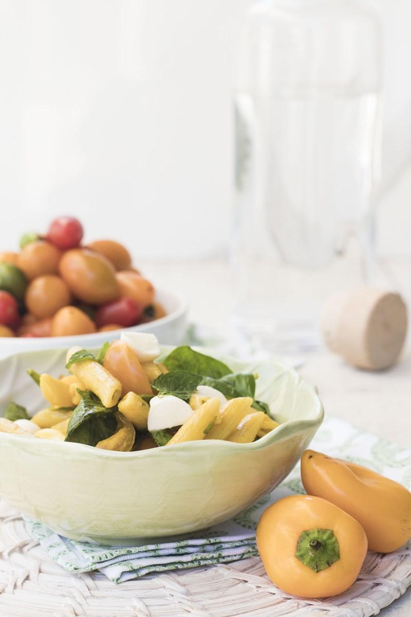 insalata di pasta con crudaiola di pomodori e mozzarella