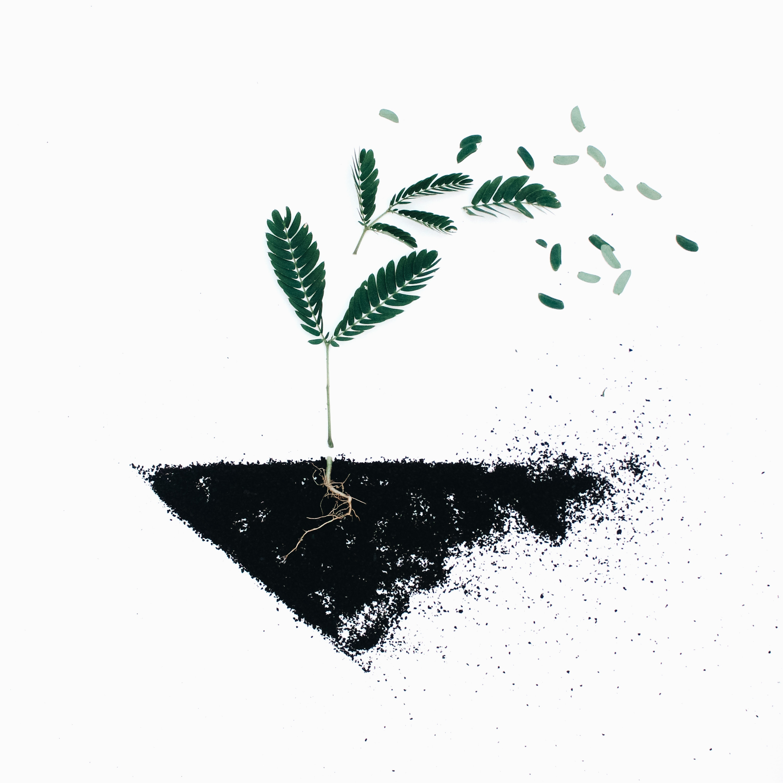 dieci piccoli passi per un futuro sostenibile