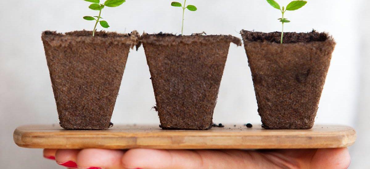 Dieci piccoli passi per un futuro sostenibile.